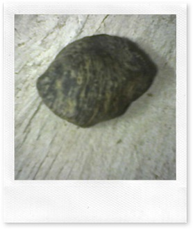 rocas1 001